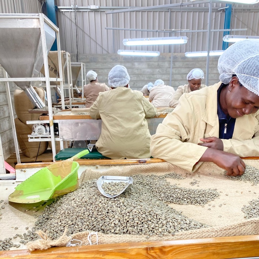 ケニアの農園視察、スペシャルティコーヒー豆を買付に行ってきました。